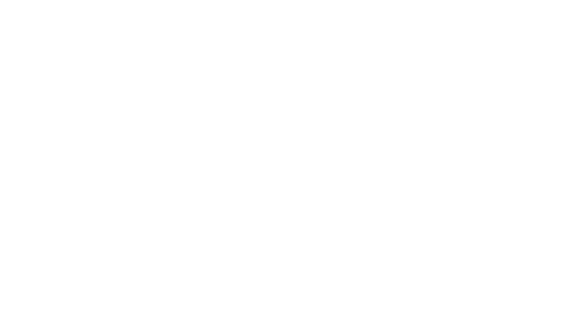 Dekkon GmbH